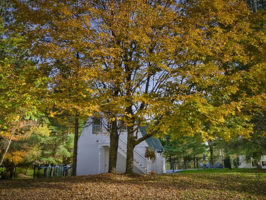 Romantic Manchester Vermont Inn Accommodations Barrows